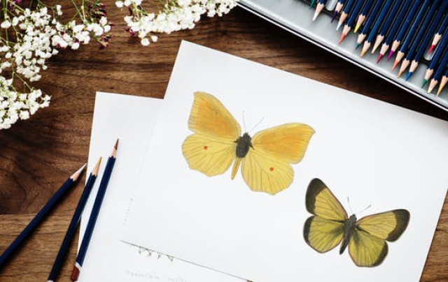 Art Therapy: 44 Creative Ideas to Support Your Health and Happiness | The Health Sessions