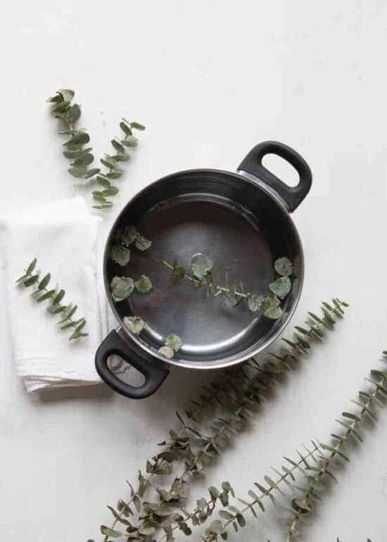 DIY Natural Remedies: Fresh Eucalyptus Steam Inhalation from Hello Glow | The Health Sessions