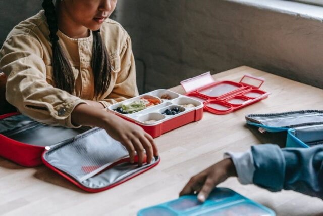 Back-to-School Season: The Adult Guide to Getting Back on Track | The Health Sessions