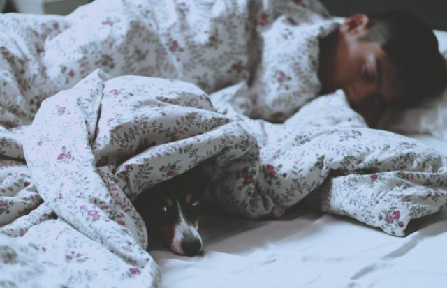 7 Sound Ideas to Get a Comfortable Night's Sleep   The Health Sessions