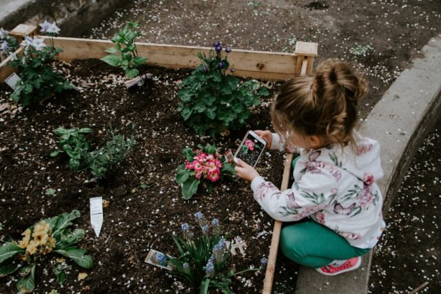 The Surprising Benefits of Gardening for Your Wellbeing | The Health Sessions