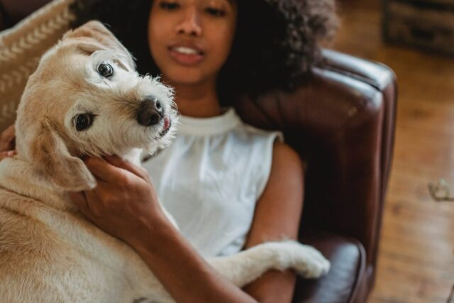 What Pavlov's Dogs Can Teach Us About Creating Healthy Habits | The Health Sessions